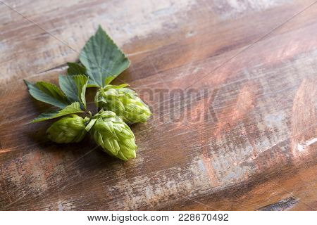 Hop Cones Isolated On Wooden Background Close-up
