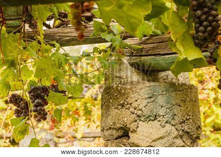 A   Characteristic Pylon Stone And Lime Of The Vineyards Of The Famous Piedmontese Wine Nebbiolo Car