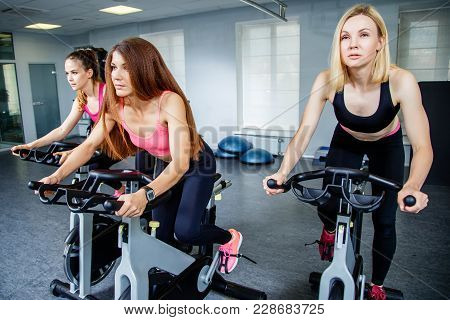 Three Young Women Biking In The Gym, Exercising Legs Doing Cardio Workout Cycling Bikes. Three Peopl