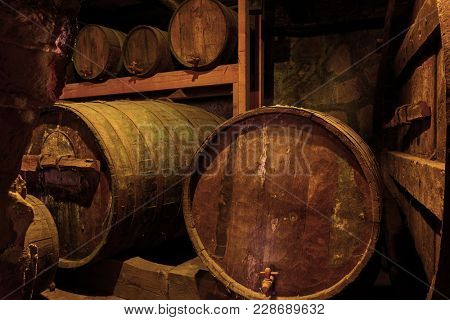 Old wooden wine barrels in cellar
