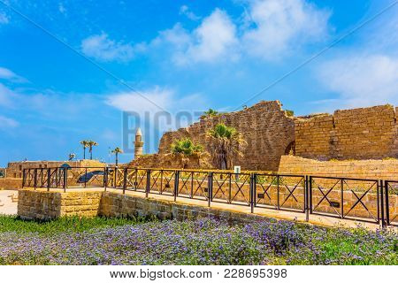 Ruins of the ancient city and port of Caesarea. Spring day in Israel. Lilac wildflowers on the seashore. Concept of archeological and historical tourism