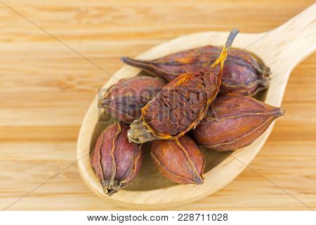 Dried fruit of Gardenia, also Called cape jasmine, chija, used as yellow dye, traditional Chinese medicine (Gardenia jasminoides fructus)