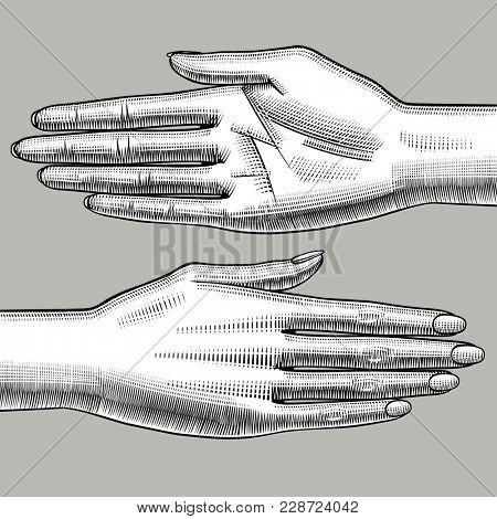 Two woman's hands palm down and palm up. Vintage engraving stylized drawing