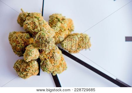Detail of cannabis buds (420 strain) over clock isolated over white background - medical marijuana dispensary concept