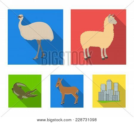 Lama, Ostrich Emu, Young Antelope, Animal Crocodile. Wild Animal, Bird, Reptile Set Collection Icons