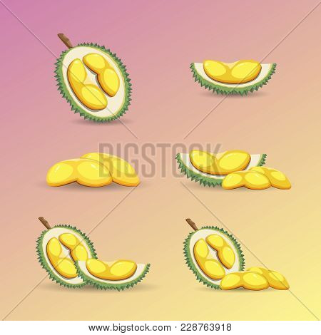 Halves Of A Durian Fruit On A Purple Background. Mature Durian Fruit Or A Smelly Fruit And Called Ki