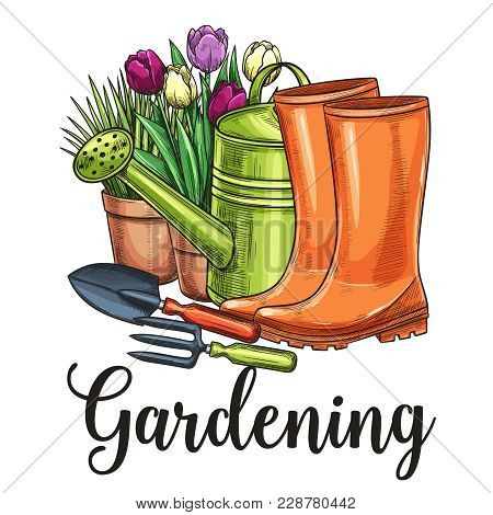 Hand Drawn Gardening Banner. Watering Can, Flowers In Pots, Garden Tools And Rubber Boots In Sketch
