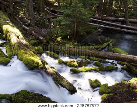 The Mountain Cold And Fresh Waters Of Clearwater Falls Rushing Over Moss Covered Rocks And Slick Wet
