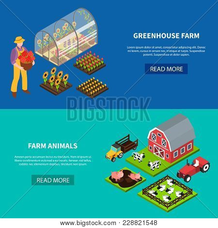 Isomeric Set Of Two Horizontal Banners With Greenhouse And Various Domestic Animals Grazing On Farm