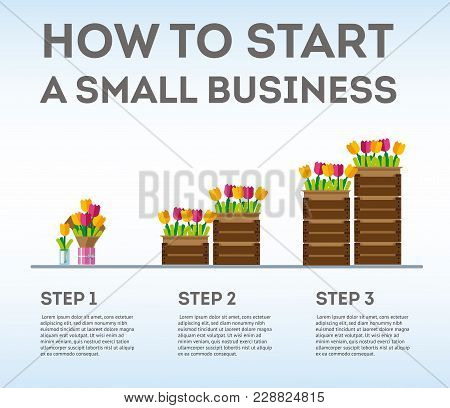 Infographic Small Business In Three Steps. The Emergence Of Small Business. Flowers As The Birth Of