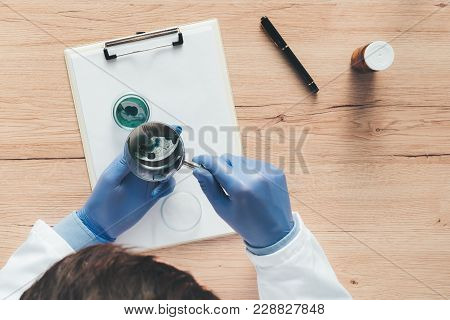 Overhead View Of Laboratory Technician Analyzing Growing Bacterial Cultures In Petri Dish, Science A