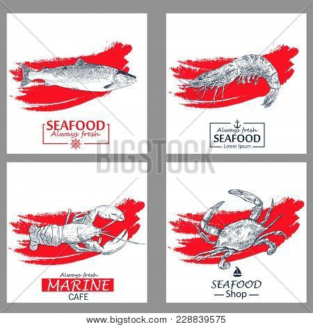 Seafood Vintage Design Template.vector Illustration Hand Drawn Linear Art. Fish And Seafood Restaura