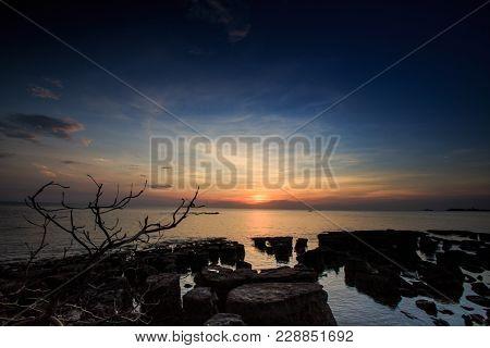 Beach Stones Leafless Tree Silhouettes Under Sunset At Skyline