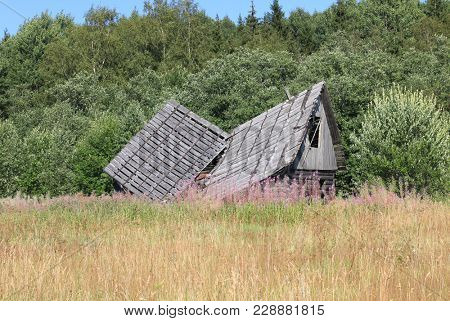 Old collapsed wooden house in the background of the forest