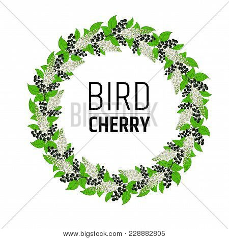 Wreath With Flowers And Berries Bird Cherry. Elements For Design. Vector