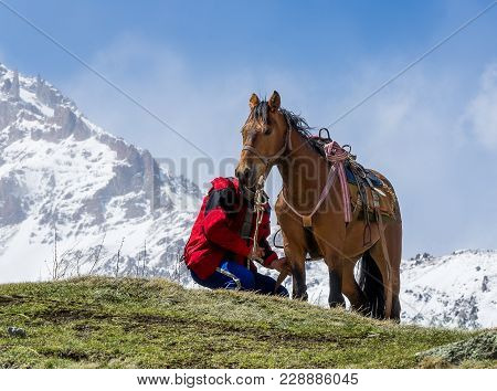 Horseman Cares For His Saddled Horse On The Background Of Snow-capped Mountain Peaks