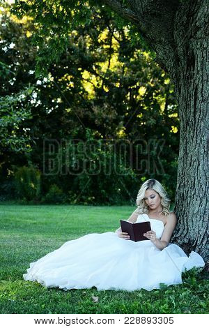 Woman In White Tulle Dress Reading Book Leaning On Tree