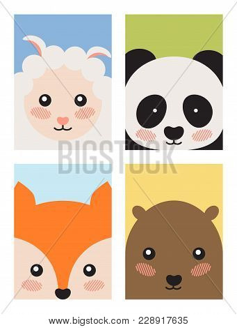 Sheep And Panda, Fox And Bear, Collection Of Covers With Animal With Different Backgrounds And Frame