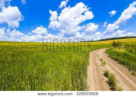 Beautiful Summer Landscape With Fresh Green Grass, Dirt Gravel Road, Blue Sky And White Puffy Clouds