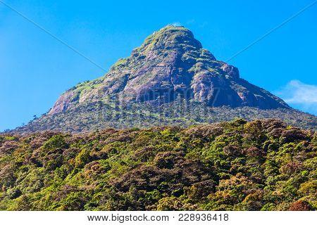Adams Peak Or Sri Pada Is A Tall Mountain In Sri Lanka. Adams Peak Is Well Known For The Sri Paadaya