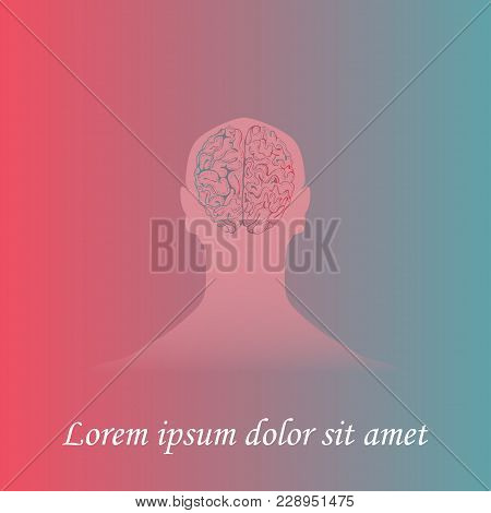 Silhouette Of A Mans Head With Hand Drawn Brain. Gradient Background. Space For Text. Human Anatomy