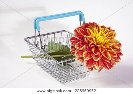 The Shopping Basket With Dahlia Isolated On White Background