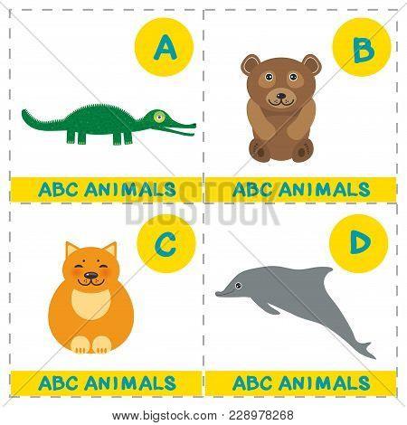 Abc Alphabet For Kids. Set Of Funny Alligator Bear Cat Dolphin Cartoon Animals Character. Cards For