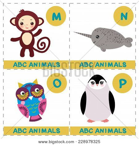 Abc Alphabet For Kids. Set Of Funny Narwhal Owl Monkey Penguin Cartoon Animals Character. Cards For