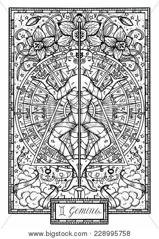 Zodiac Sign Twins Or Gemini With Narcissus Flower And Lucky Numbers. Hand Drawn Fantasy Graphic Vect