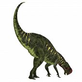 Altirhinus Dinosaur Tail 3d illustration - Altirhinus was an iguanodont herbivore dinosaur from the Cretaceous Period of Mongolia. poster