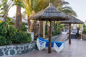 A Sunbathing Area At Hotel Bungalows Sun Beds Blue And White Beneath An Umbrella Whit Green Bushes A