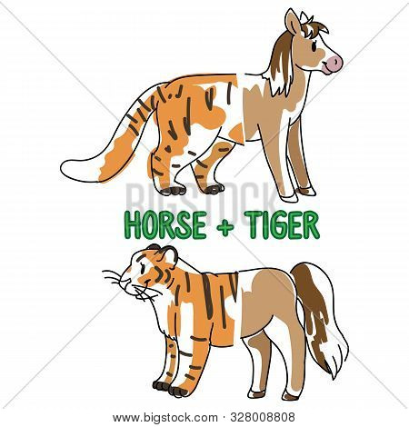 poster of Childish tiger and horse animal splice vector illustration. Hand drawn doodle inked wildlife animal creature mixture, trendy feline and equine monster clipart.