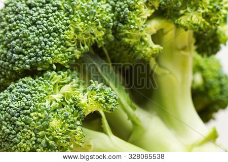 A Fresh Brocoli In An Isolated View