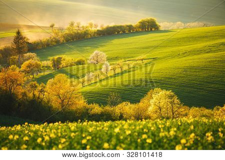 Tranquil rural landscape in sunbeams. Beautiful sunlight on the wavy fields. Location place of South Moravia, Czech Republic, Europe. Photo of ecology concept. Discover the beauty of earth.
