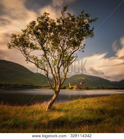 Kilchurn Castle Behind The Tree And Loch Awe At Sunset, Scotland