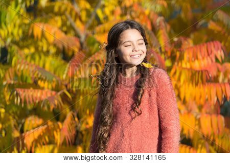Autumn Puts Her In Good Mood. Happy Small Girl In Autumn Mood Outdoors. Little Child Play On Fresh A