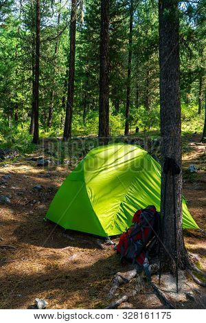Backpack, Poles And Green Tent In The Woods. Tourist Camp In A Nice Place.