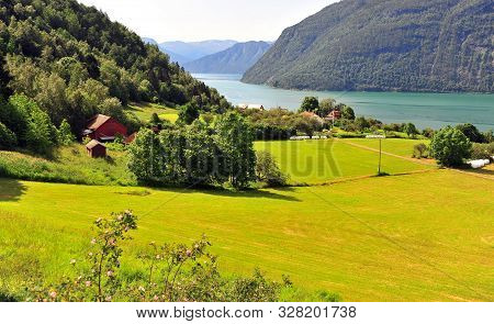 Green Valley With Fjord At Ornes Village