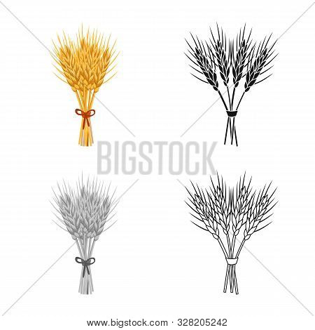 Isolated Object Of Barley And Sheaf Logo. Set Of Barley And Malt Vector Icon For Stock.