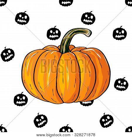 Autumn Pumpkin Vegetable Design. Pumpkin Oriental Bittersweet Vector Illustration. Orange Halloween