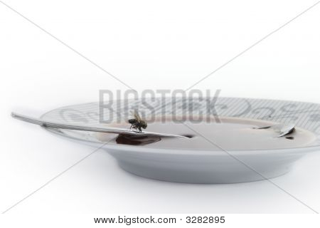 Fly Sitting On Spoon In Soup