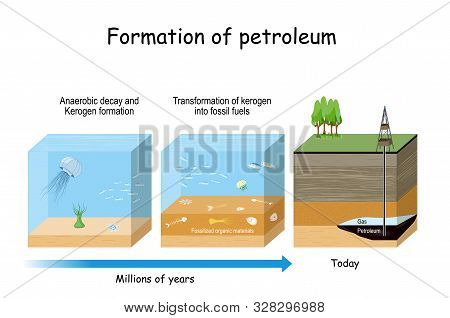 Formation Of Petroleum. Oil And Gas Formation. Fossil Fuel Derived From Ancient Fossilized Organic M