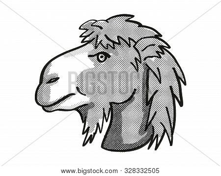 poster of Retro cartoon mono line style drawing of head of a Bactrian Camel or Camelus Bactrianus, an endangered wildlife species on isolated white background done in black and white.