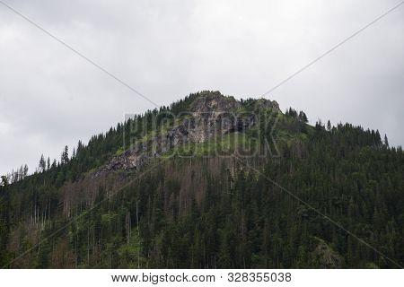 Small Mountain I The Tatras Park, Poland