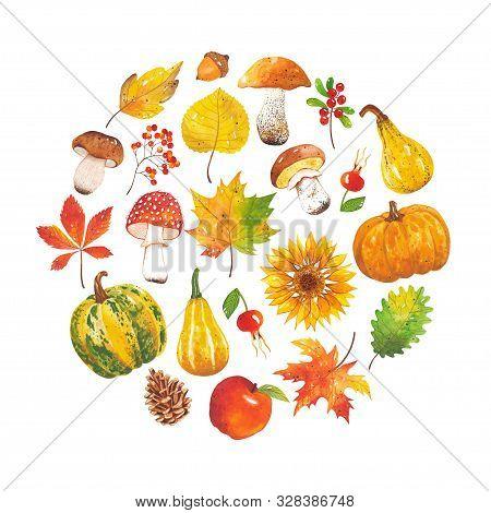 Watercolor Hand-drawn Set Of Autumn Harvest In A Circle. Autumn Mushroom, Leaf, Pine Cone, Pumpkin,