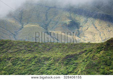 Reserva Florestal Natural Do Morro Alto E Pico Da Se