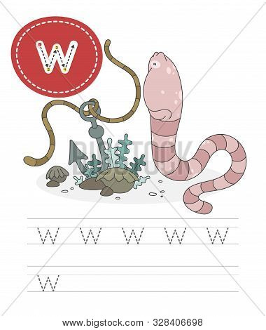 Learning To Write A Letter - W. A Practical Sheet From A Set Of Exercises Game For Kids. Funny Inver