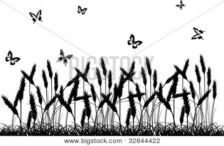illustration with wheat and butterflies silhouettes isolated on white background