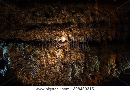 Lighting In The Wall Of A Lava Cave Covered With A Yellow Fungal, Organic Coating. The View Opening