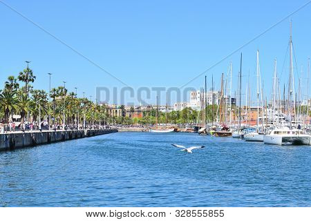 Spain. Beautiful Promenade In Barcelona In A Sunny Summer Evening
